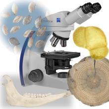 Лаборатория естественнонаучных методов в археологии
